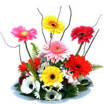 Eskişehir hediye çiçek yolla  camda gerbera ve mis kokulu kir çiçekleri