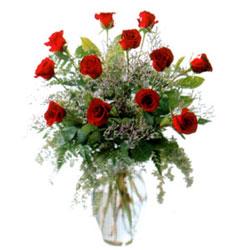 Vazo içerisinde 11 kirmizi gül  Eskişehir çiçek siparişi vermek