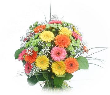 13 adet gerbera çiçegi buketi  Eskişehir online çiçek gönderme sipariş