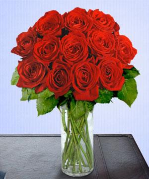 Anneme 12 adet cam içerisinde kirmizi gül  Eskişehir çiçek siparişi sitesi