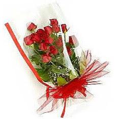 13 adet kirmizi gül buketi sevilenlere  Eskişehir çiçek siparişi vermek