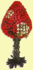 Eskişehir çiçek gönderme  dügün açilis çiçekleri  Eskişehir çiçek online çiçek siparişi