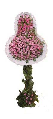 Eskişehir ucuz çiçek gönder  dügün açilis çiçekleri  Eskişehir internetten çiçek siparişi