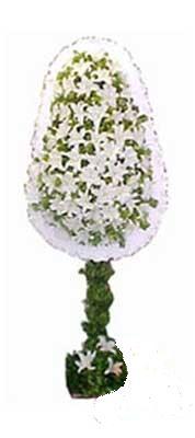 Eskişehir çiçek siparişi sitesi  nikah , dügün , açilis çiçek modeli  Eskişehir online çiçek gönderme sipariş