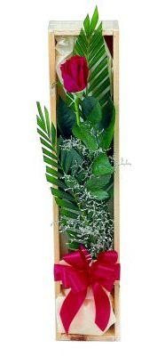1 adet kutuda kirmizi gül  Eskişehir çiçek gönderme sitemiz güvenlidir