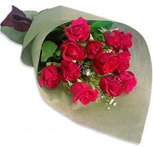 Uluslararasi çiçek firmasi 11 adet gül yolla  Eskişehir çiçek mağazası , çiçekçi adresleri