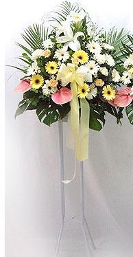 Eskişehir online çiçek gönderme sipariş   perförje çiçegi dügün çiçekleri
