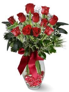 9 adet gül  Eskişehir internetten çiçek satışı  kirmizi gül