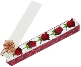 Eskişehir internetten çiçek satışı  kutu içerisinde 5 adet kirmizi gül