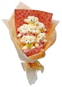 12 adet ayiciktan buket  Eskişehir çiçek siparişi sitesi