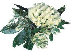 Eskişehir internetten çiçek siparişi  9 Beyaz gül Özel kisiler için