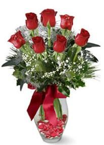 Eskişehir internetten çiçek siparişi  7 adet kirmizi gül cam vazo yada mika vazoda