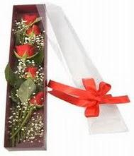 kutu içinde 5 adet kirmizi gül  Eskişehir internetten çiçek siparişi