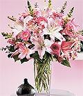 Eskişehir çiçek yolla , çiçek gönder , çiçekçi   Kazablanka biçme vazoda