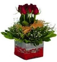 Eskişehir çiçek gönderme  7 adet mika yada cam vazoda gül tanzimi