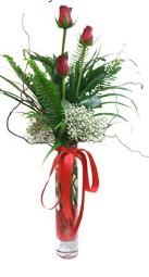 Eskişehir çiçek siparişi sitesi  3 adet kirmizi gül vazo içerisinde