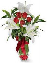 Eskişehir çiçek siparişi vermek  5 adet kirmizi gül ve 3 kandil kazablanka