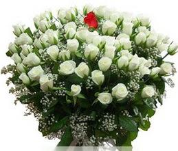 Eskişehir internetten çiçek satışı  100 adet beyaz 1 adet kirmizi gül buketi