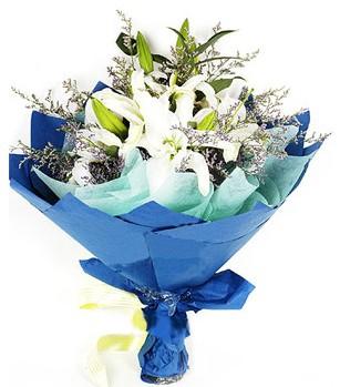 Eskişehir anneler günü çiçek yolla  4 adet dal kazablankadan görsel buket