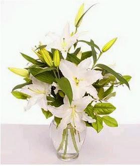 Eskişehir çiçek gönderme  2 dal cazablanca vazo çiçeği