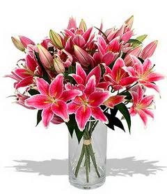 4 dal cazablanca görsel vazosu  Eskişehir çiçekçi mağazası