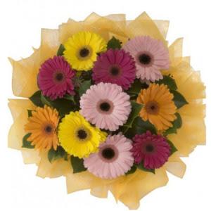 Eskişehir İnternetten çiçek siparişi  11 adet karışık gerbera çiçeği buketi