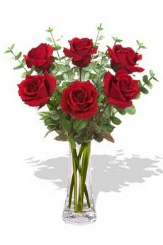 Eskişehir çiçekçi mağazası  6 kırmızı gül vazosu