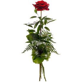 Eskişehir online çiçekçi , çiçek siparişi  1 adet kırmızı gülden buket