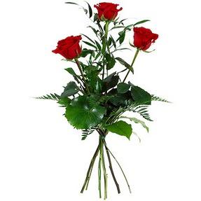 Eskişehir uluslararası çiçek gönderme  3 adet kırmızı gülden buket