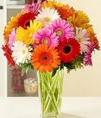 Eskişehir çiçek servisi , çiçekçi adresleri  15 adet gerbera çiçek vazosu