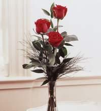 Eskişehir internetten çiçek satışı  Vazoda 3 adet güzel gül