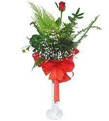 Eskişehir anneler günü çiçek yolla  Cam vazoda masum tek gül