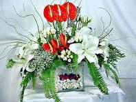 Eskişehir çiçek mağazası , çiçekçi adresleri  Anthurim Kazablanka  gül