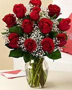 Sevgilime hediye 9 adet 1.ci kalite gül  Eskişehir anneler günü çiçek yolla