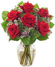 Kız arkadaşıma hediye 6 kırmızı gül  Eskişehir internetten çiçek siparişi
