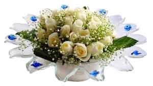 Eskişehir çiçek online çiçek siparişi  11 adet Beyaz güller özel cam tanzim