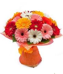 Renkli gerbera buketi  Eskişehir anneler günü çiçek yolla