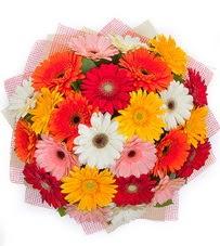 15 adet renkli gerbera buketi  Eskişehir yurtiçi ve yurtdışı çiçek siparişi