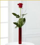 Vazo içerisinde 1 adet kırmızı gül  Eskişehir internetten çiçek siparişi