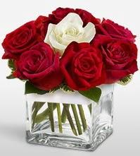 Tek aşkımsın çiçeği 8 kırmızı 1 beyaz gül  Eskişehir uluslararası çiçek gönderme