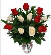 Vazo içerisinde 6 kırmızı 6 beyaz gül  Eskişehir hediye çiçek yolla