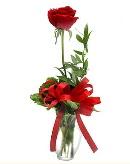 vazo içerisinde 1 adet kırmızı gül  Eskişehir çiçekçi telefonları