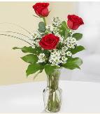 Vazo içerisinde 3 adet kırmızı gül  Eskişehir çiçek satışı