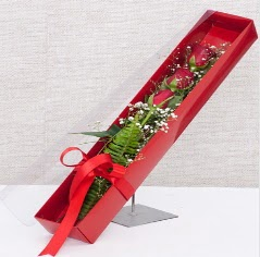 Kutu içerisinde 3 adet kırmızı gül  Eskişehir online çiçek gönderme sipariş