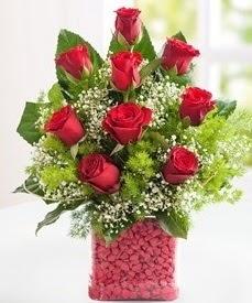 Cam içerisinde 9 adet kırmızı gül  Eskişehir internetten çiçek satışı