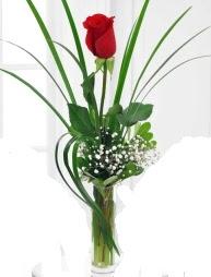 Cam içerisinde 1 kırmızı gül  Eskişehir çiçek gönderme sitemiz güvenlidir