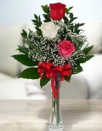 Camda 2 kırmızı 1 beyaz gül  Eskişehir ucuz çiçek gönder