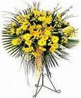 Eskişehir yurtiçi ve yurtdışı çiçek siparişi  Sari kazablanka Ferforje