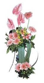 Eskişehir güvenli kaliteli hızlı çiçek  Pembe Antoryum Harikalar Rüyasi