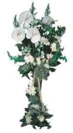Eskişehir çiçek mağazası , çiçekçi adresleri  antoryumlarin büyüsü özel